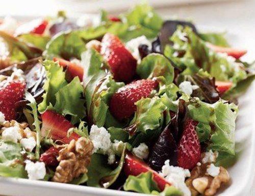Harvest Spring Mix Salad